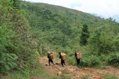 climbing Sa Pa